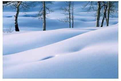 winter2-001