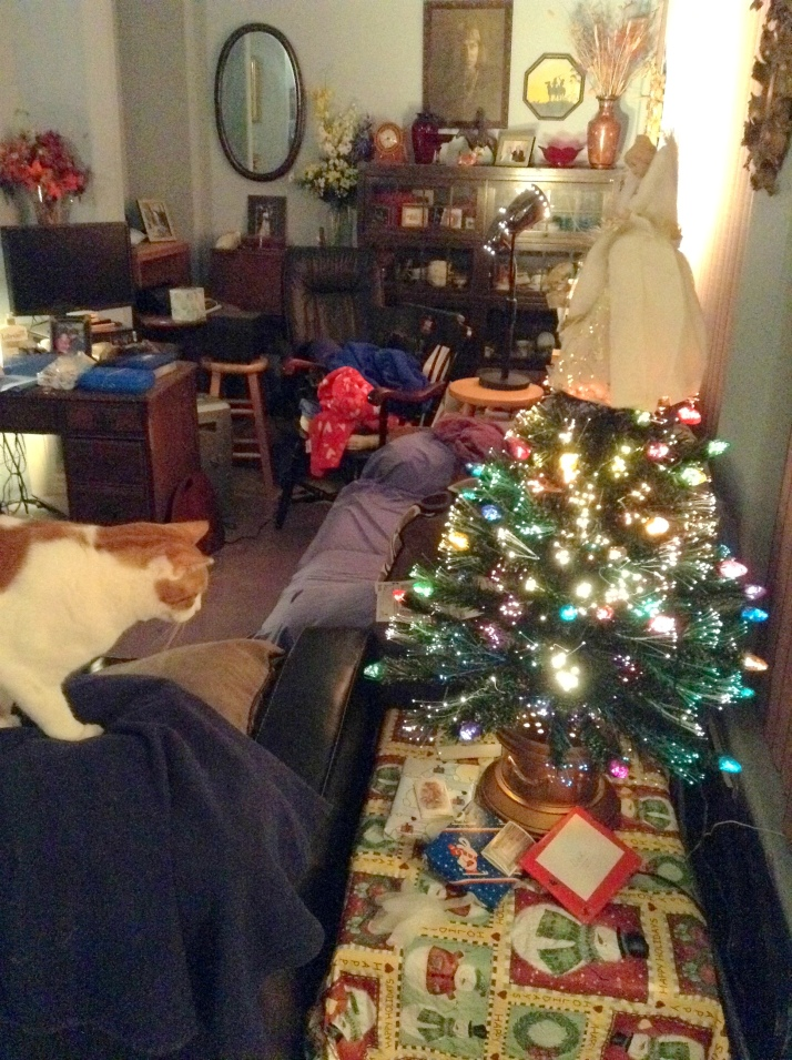 christmas tree 2013-001